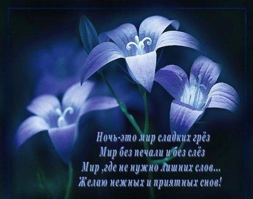 А.С. Пушкин: как справиться с бессонницей