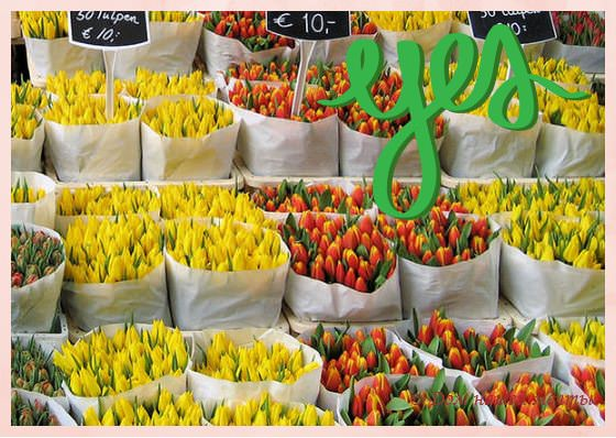 как покупать цветы