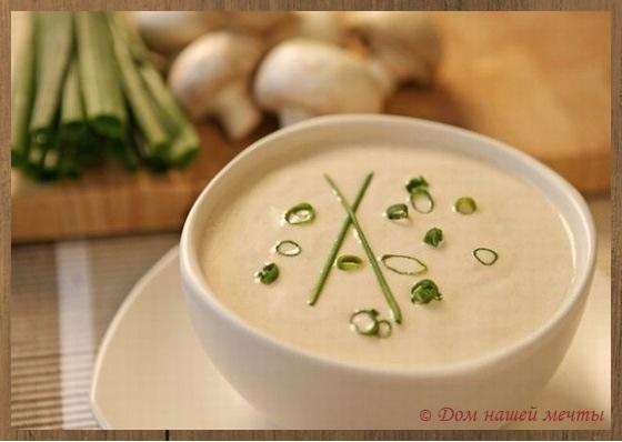 Как приготовить суп пюре из шампиньонов