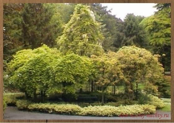 беседка садовая деревянная