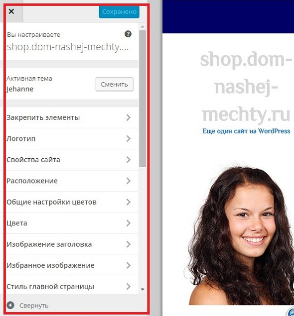 nastrojka-temy-wordpress-1