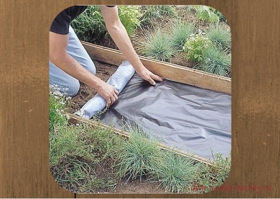 Как сделать тропинки на даче